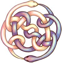 AURYN-blog