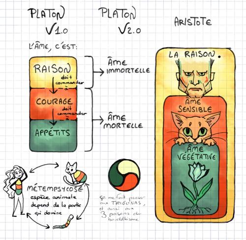 schema-platon-aristote-blog